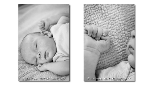 Tucson Newborn & Child Photography